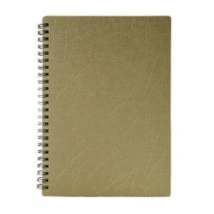 Diary (DA10)