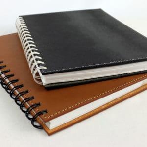 Diary (DA11)