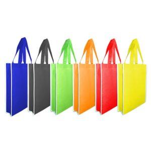 Non Woven Bags (NWB05)