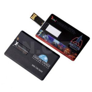 USB Flash Drive (U03)